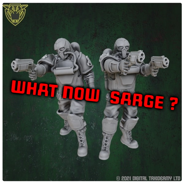 What now sarge? - Flash Fiction 012
